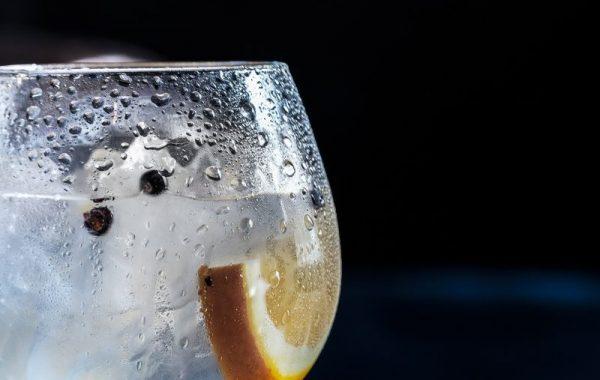 lage en Gin og Tonic