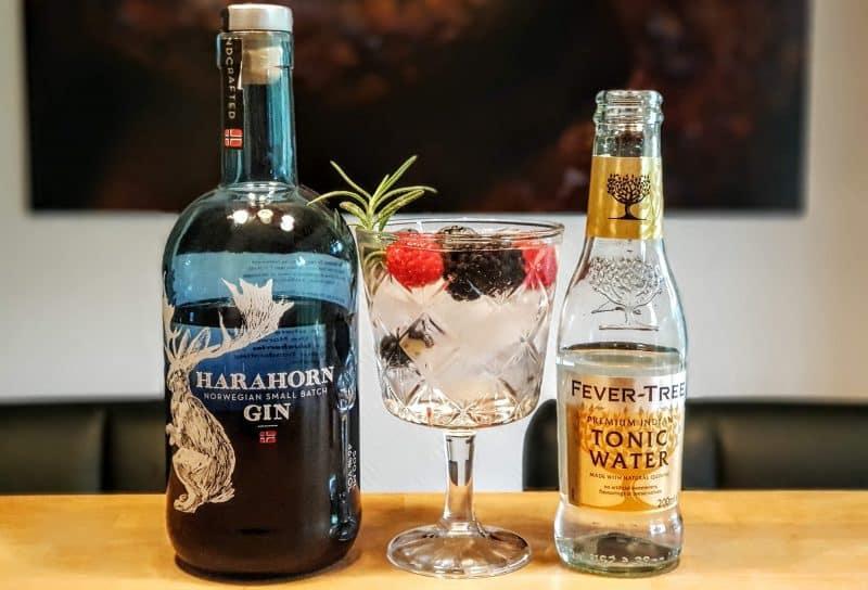 Gin-Tonic med Harahorn Gin og skogsbær