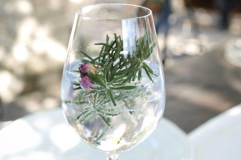 Hvilken tonic er best til gin