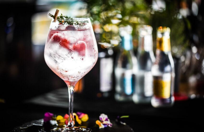Verdens Gin Dag 2021 World Gin Day 2021