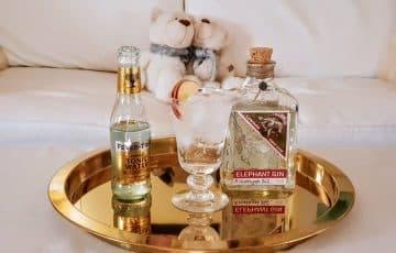 Gin og Tonic med Elephant Gin