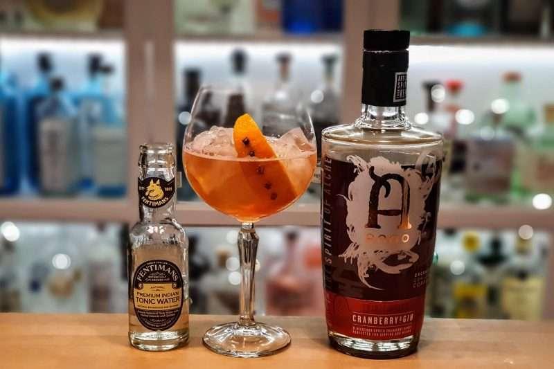 Gin og Tonic med Anno Cranberry Gin