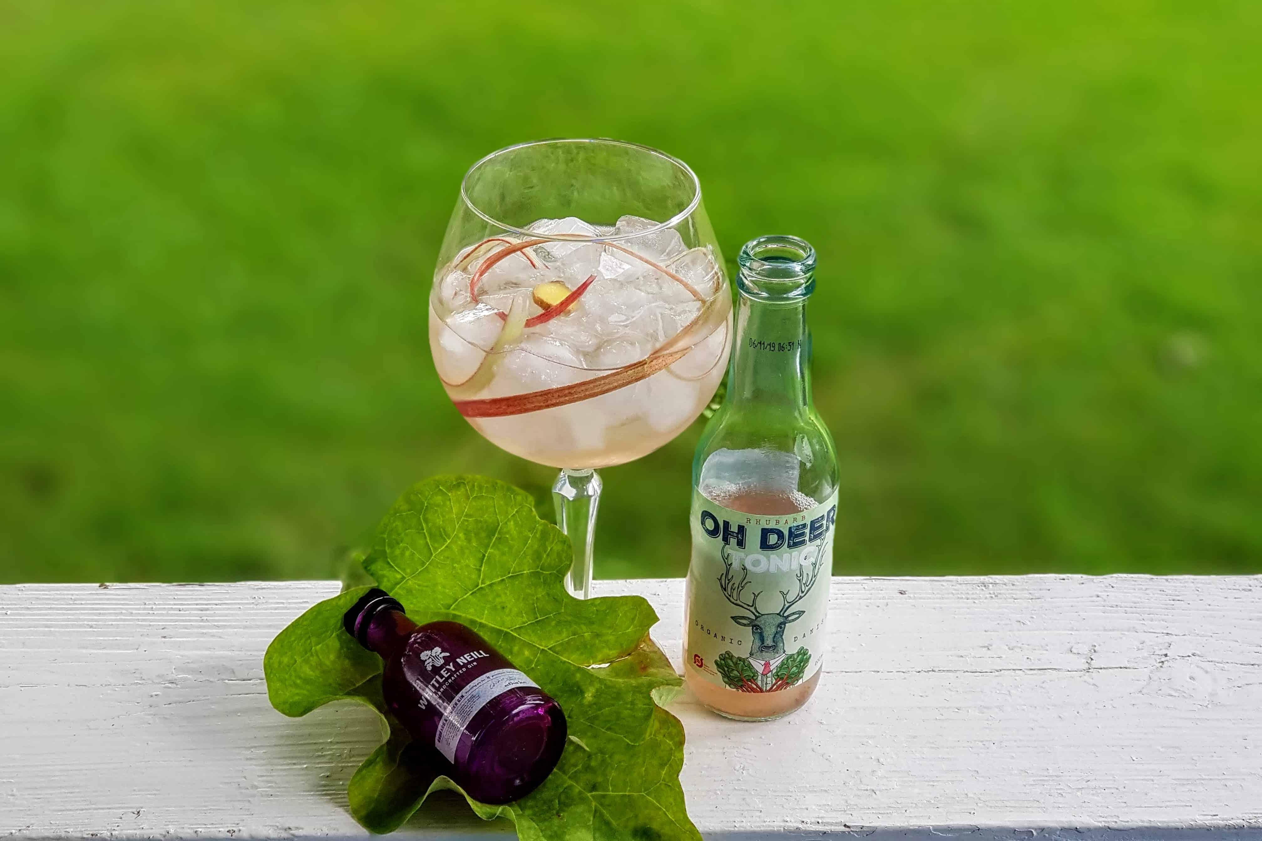 Gin og Tonic med Whitley Neill Rhubarb and Ginger Gin