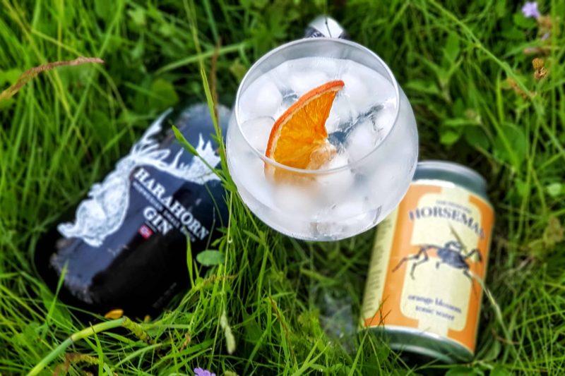 GT med Harahorn Gin
