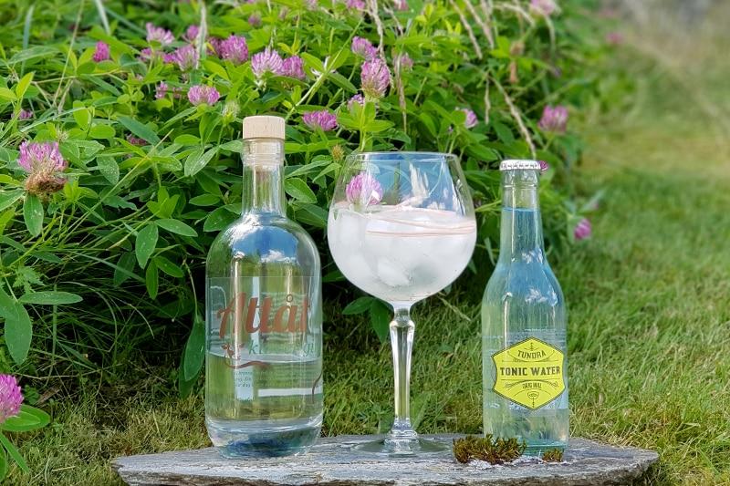 Gin og Tonic med Attåt kløver gin og mjødurt-sirup
