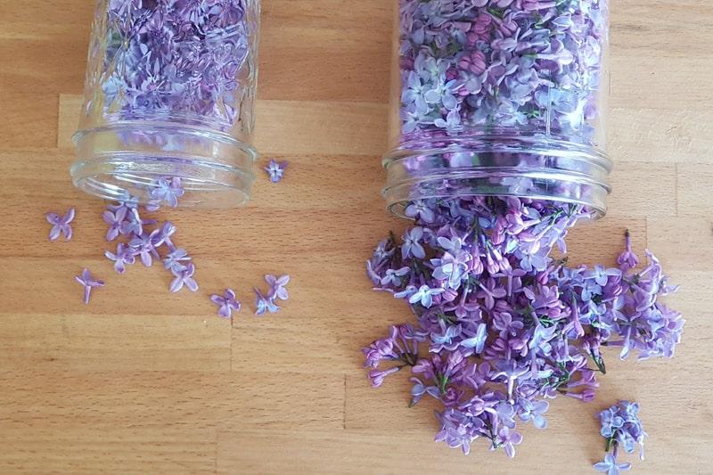 Syrin blomster, nøyaktig renset til venstre, og til høyre har noe av det grønne fått sitte på.