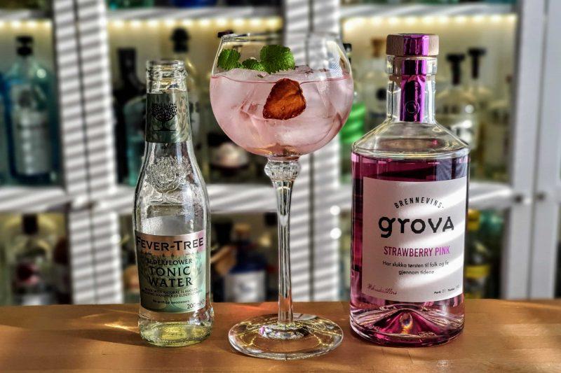 Gin og Tonic med Brennevinsgrova Pink Strawberry Gin