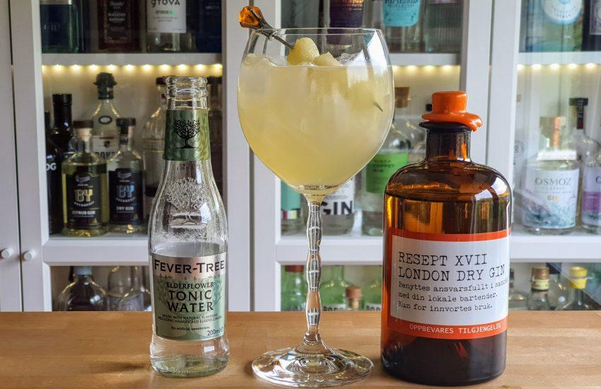 Gin og Tonic med Resept XVII og melonsaft