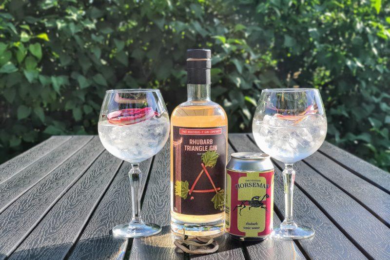 Gin og Tonic med Rhubarb Triangle Gin
