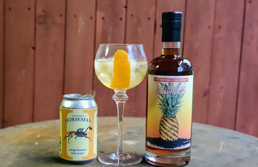 Gin og Tonic med Spitroasted Pinaple Gin