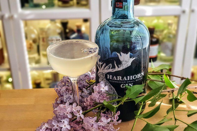 Syrin-drøm cocktail med Harahorn Gin