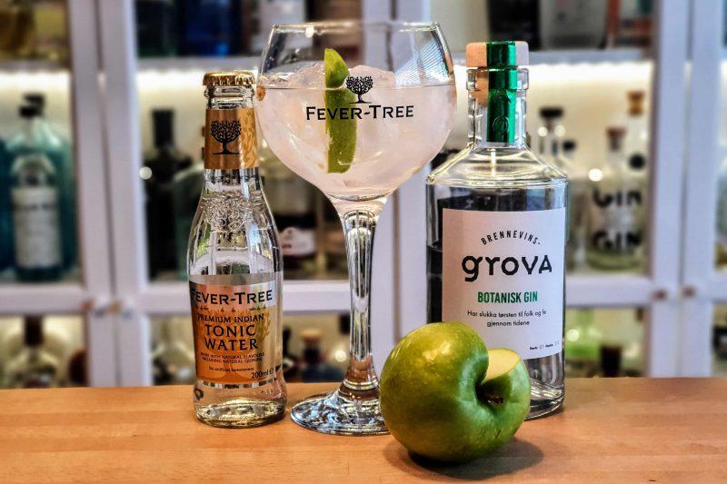 Gin-Tonic med Brennevinsgrova Botanisk Gin