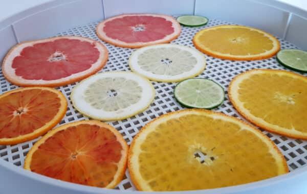 Dette trenger du for å tørke-frukt til garnityr hjemme