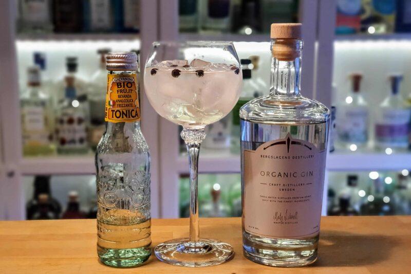 Gin og Tonic med Bergslagens Gin